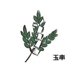 玉串奉奠,玉串,神葬祭